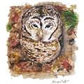 Little Owl by Monique Faella