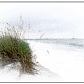 Little Piece Of Florida  by Robert Sargent