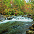 Little Pigeon River Flows In Autumn In The Smoky Mountains by Carol Mellema