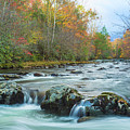 Little Pigeon River Great Smoky Mountains National Park In Fall by Carol Mellema