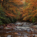 Little Pigeon River In Autumn by Randy Ball