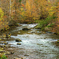 Little Pigeon River In Fall Smoky Mountains National Park by Carol Mellema