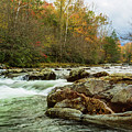 Little Pigeon River In The Greenbrier Section Of Smoky Mountains by Carol Mellema