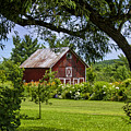 Little Red Barn by Donna Doherty