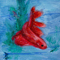Little Red Betta Fish by Brenda Thour