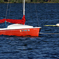 Little Red Sailboat by Ron Read