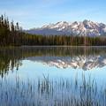 Little Redfish by Idaho Scenic Images Linda Lantzy