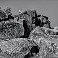 Little Round Top Gettysburg by Tommy Anderson