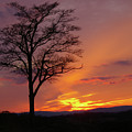 Little Round Top Sunset by Jen Goellnitz