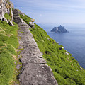 Little Skellig Island, From Skellig Michael, County Kerry Ireland by Peter Barritt