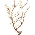 Little Tree 58 by Sean Seal