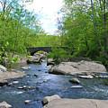 Little Unami Creek - Pennsylvania by Bill Cannon