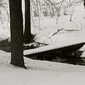 Little Winter Crossing by Debra     Vatalaro