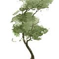 Little Zen Tree 206 by Sean Seal