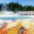 Live Dream Own Yellowstone Park Black Pool Text by Thomas Woolworth
