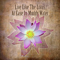Live Like The Lotus by Michel Godts