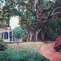 Live Oak Gardens Jefferson Island La by Todd Blanchard
