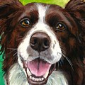Liver And White Border Collie by Dottie Dracos