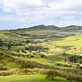 Livermore Valley by Karen  W Meyer