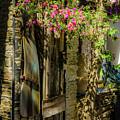 Living In Spain by Wolfgang Stocker