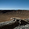 Lizard Crater by Murray Bloom