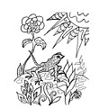 Lizard Ink Coloring Book by Robin Maria Pedrero