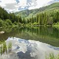 Lizard Lake Reflections by Debbie Rudd