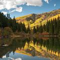 Lizard Lake by Steve Stuller