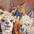 Llama Love by Carole Robare
