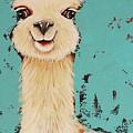 Llama Sid by Lucia Stewart