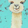 Llama Sue by Lucia Stewart