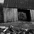 lloyd-shanks-barn-2BW by Curtis J Neeley Jr