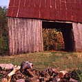 Lloyd Shanks Barn2 by Curtis J Neeley Jr