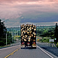 Load Of Logs by Elaine Berger