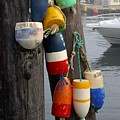 Lobster Buoy At Water Taxi Pier by Faith Harron Boudreau
