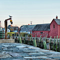 Lobster Pots On Rockports T Wharf by Jeff Folger