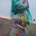 Lobster Pots by Robert Edgar