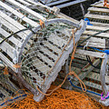 Lobster Traps by Darla Bruno