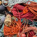 Lobstering Lines by Darla Bruno