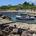 Local Boats In Harbour by Gordon Longmead
