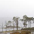 Loch Assynt by Mike Bambridge