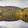 Loch Faskally Autumn by M M Rainey