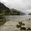 Loch Shiel by Fran Gallogly