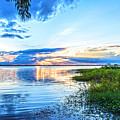 Lochloosa Lake by Anthony Baatz