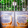 Locked Gate With Trees by Silvia Ganora
