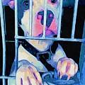 Locked Up by Kathy Tarochione