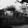 Locomotive 8241 by Alan Look