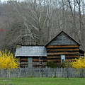 Log Cabin by Bernd Billmayer
