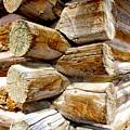 Log Cabin Corner by Dennis Galloway