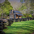 Log Cabin, Smoky Mountains, Tennessee by Stanton Tubb